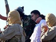 Jordan cảnh cáo IS sau vụ bắt giữ phi công