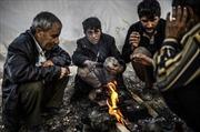Rời Kobane, người tị nạn không chốn nương thân