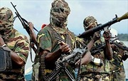 Boko Haram thiêu rụi 16 thị trấn Nigeria