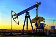 Giá dầu xuống mức thấp nhất trong 6 năm