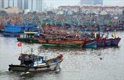 5 ngư dân bị nạn ở Hoàng Sa về đất liền an toàn