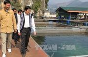 Chủ tịch nước thăm, làm việc tại tỉnh Hòa Bình