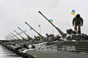 Nguy cơ giao tranh tổng lực tại Đông Ukraine