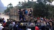 Ba người chết do sập hầm khai thác đá xanh ở Thanh Hóa