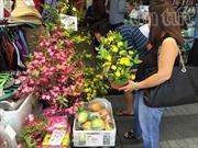 Nhộn nhịp chợ Việt tại Australia dịp đón Xuân Ất Mùi