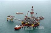 Giá dầu châu Á tiếp tục giảm