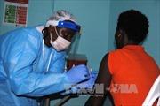 Thảo dược Đông y ngăn chặn virus Ebola
