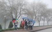 Đông Bắc Bộ mưa phùn, Tây Nguyên, Nam Bộ nắng nhiều