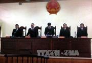 Xét xử hung thủ thực sự trong vụ án oan Nguyễn Thanh Chấn