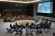 HĐBA LHQ ủng hộ Tổng thống Yemen M.Hadi