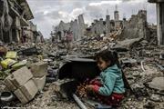 Kobane hoang tàn ngày người Kurd trở về
