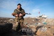 Bộ tứ Normandy bất đồng về xung đột Đông Ukraine