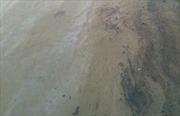 Hơn 10.000 lít dầu tràn ra sông Vàm Cỏ