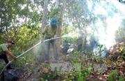Rừng tràm U Minh Hạ nguy cơ cháy mức cực kỳ nguy hiểm