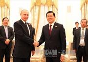 Chủ tịch nước hội đàm với Tổng thống Nga Putin
