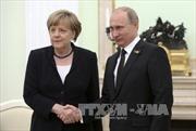 Nga-Đức bàn về Ukraine và khôi phục quan hệ