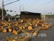 Tây Ninh: Hai xe tải đâm nhau, 3 người thương vong