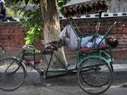 Hơn hai trăm người tử vong do nắng nóng tại Ấn Độ