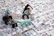 Đưa gạo Việt Nam trở thành thương hiệu hàng đầu thế giới