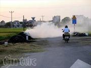 Hải Dương: Tái diễn nạn đốt rơm, rạ vào mùa thu hoạch