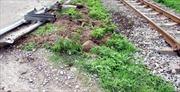 Bị tàu hỏa đâm, tài xế xe tải tử vong