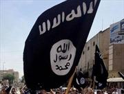 Lý do khiến IS cứ mạnh lên, khó bị đánh bại