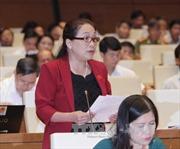 Quốc hội thảo luận dự thảo Luật ngân sách nhà nước (sửa đổi)