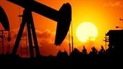 OPEC giữ nguyên sản lượng dầu mỏ