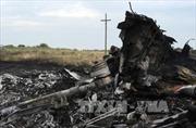 Mở cuộc điều tra quốc tế mới về vụ rơi máy bay MH17