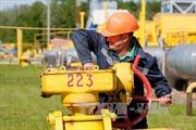Nga quyết không đổi giá bán khí đốt cho Ukraine