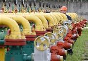 Ukraine ngừng mua khí đốt của Nga