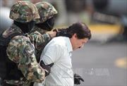Mexico treo thưởng gần 4 triệu USD bắt trùm ma túy vượt ngục