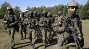 Ukraine, Litva, Ba Lan lập đơn vị quân đội chung