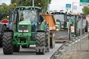 Nông nghiệp Pháp thiệt hại nặng do Nga cấm vận trả đũa