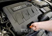 Thêm nhà sản xuất của Volkswagen dính bê bối gian lận khí thải