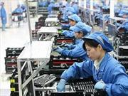 Đảm bảo quyền lợi của lao động xuất khẩu