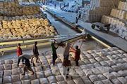 TPP và AEC tạo thuận lợi cho thương mại nông lâm thủy sản