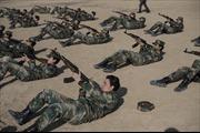 """Lữ đoàn """"Sư tử cái vệ quốc"""" của Syria"""