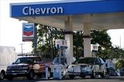 Giá dầu, vàng tiếp tục biến động trái chiều