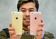 Rộ tin đồn Apple thu hẹp sản xuất iPhone 6S và 6S Plus