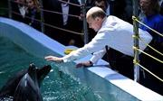 """Nga khôi phục """"đội lính đặc nhiệm"""" cá heo ở Crimea"""