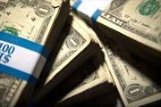 Ngân hàng mất 81 triệu USD vì lỗi máy in
