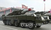 Nghi Triều Tiên phóng tên lửa đạn đạo, Nhật, Hàn theo sát