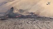 IS tuyên bố bắn rơi máy bay chiến đấu Syria