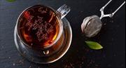Một tách trà mỗi ngày: Tăng tuổi thọ thêm 25%