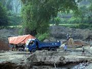 Hải Dương: Huyện Tứ Kỳ phớt lờ lệnh cấm khai thác cát của tỉnh?