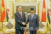 Việt Nam và Brunei, Singapore thúc đẩy triển khai các thỏa thuận