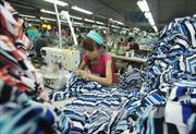 Cơ hội của Việt Nam trong EVFTA