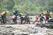 Gần 140 người chết do siêu bão Matthew