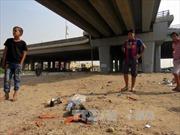 Đánh bom xe tại Iraq gây nhiều thương vong